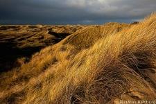 daenemark_landschaft