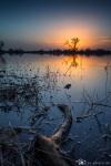 Elbe-Parey-Sonnenuntergang-Spiegelung