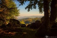 Harz-Renneklippen-Ausblick