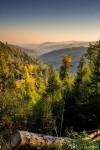 Harz-Renneklippen-Runde