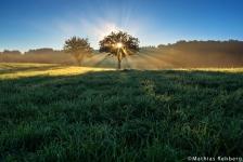 Attendorn-Sonnenaufgang-Nebel-Golfplatz-Sauerland-NRW