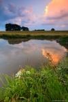 hetlingen-natur-deich-Norddeutschland