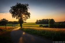 Bayern-Nittenau-Sonnenuntergang