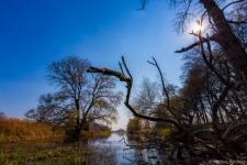 Altmark-Landschaft-Wasser
