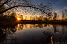 Altmark-Landschaftsfotografie-Langensalzwedel