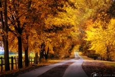Herbst-in-der-Altmark