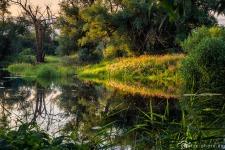 Natur-Altmark-Idyll