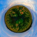 sonnenblumen-altmark-kugelpanorama